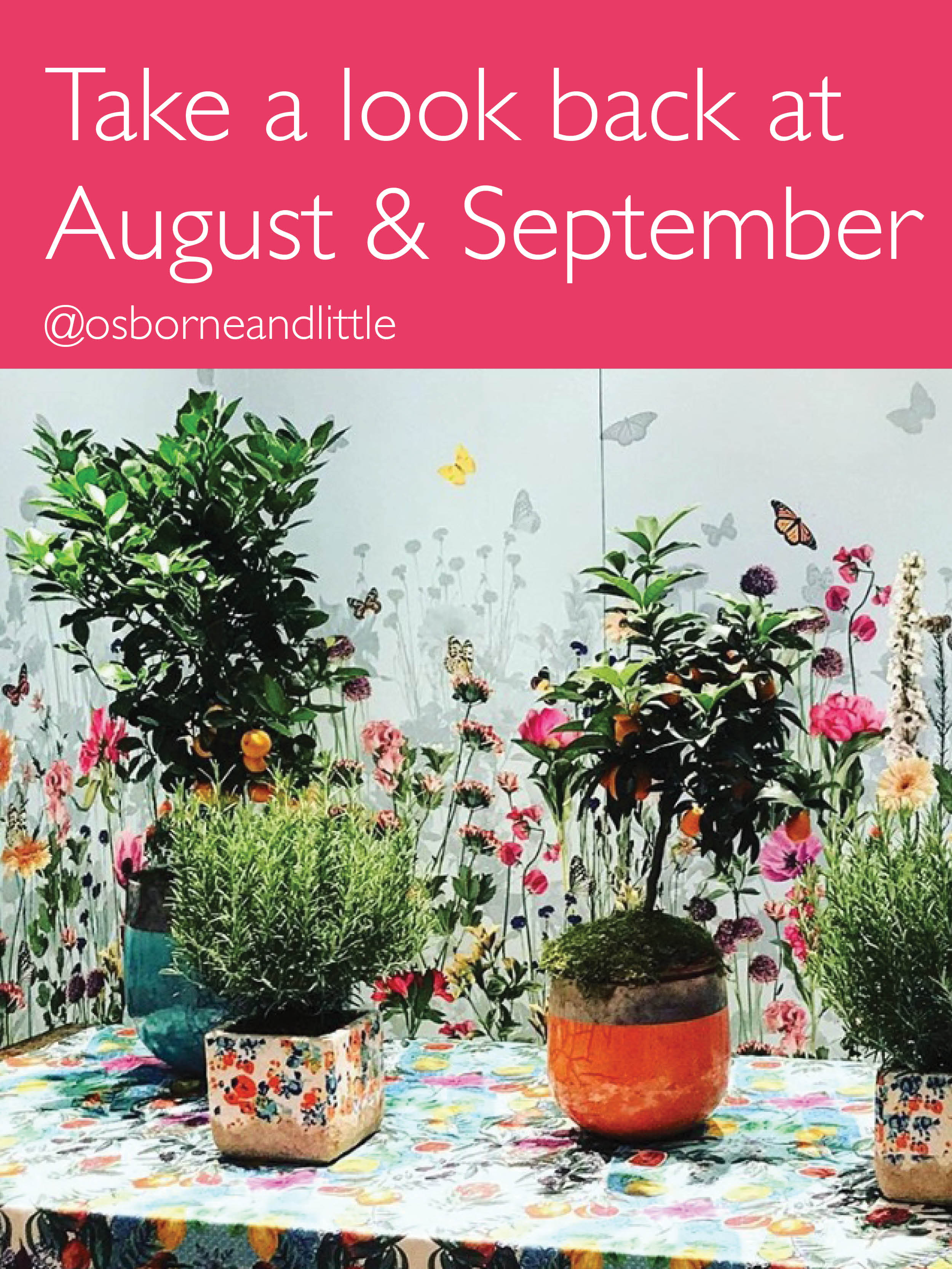 News & Events - Osborne & Little August and September 2018